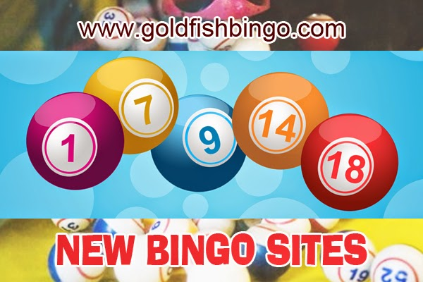 new-bingo-sites